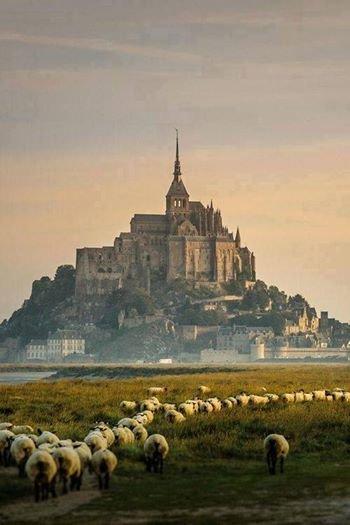 جزيرة قريبة من ساحل #نورماندي_الفرنسي صوره 2