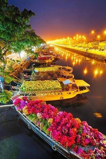 أسواق مليئة #بالزهور فى فيتنام #غرد_بصوره 3