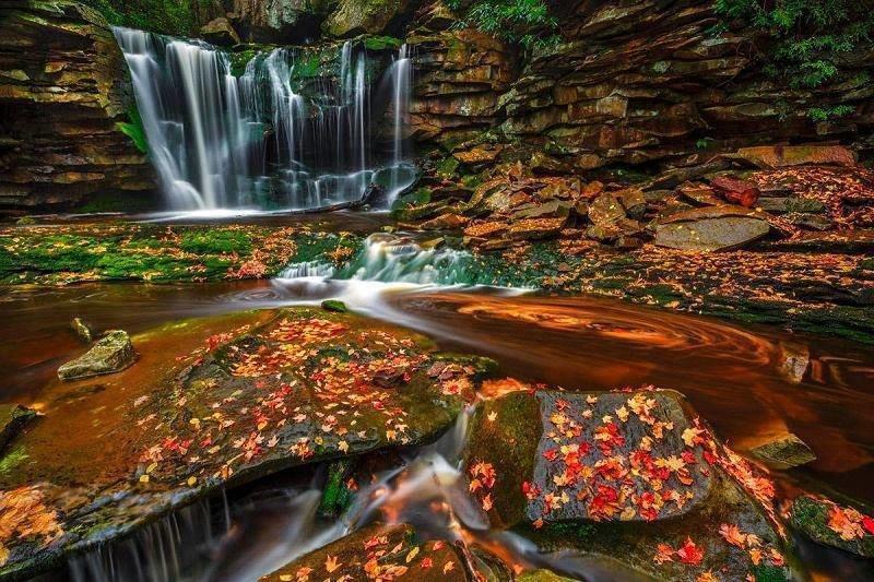 شلالات جميلة في ولاية فيرجينيا الأميركية صوره 3