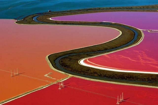 بركة الملح الملونه في #خليج_سان_فرانسيسكو صوره 5
