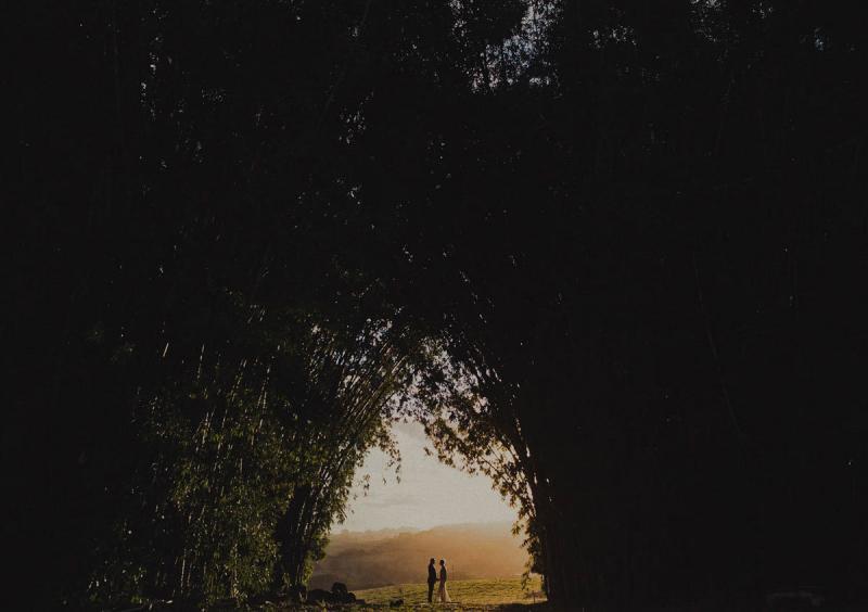 خارج عن المألوف صوره الزفاف وسط الطبيعة الساحرة في #السويد#غرد_بصورة