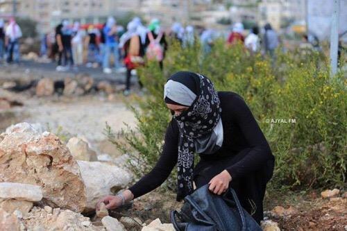 فتاة تجمع الحجارة للشبان داخل حقيبة يدها لإيصالها لهم في المواجهات الدائرة على المدخل الشمالي لمدينة البيرة. #فلسطين #انتفاضه_القدس -1