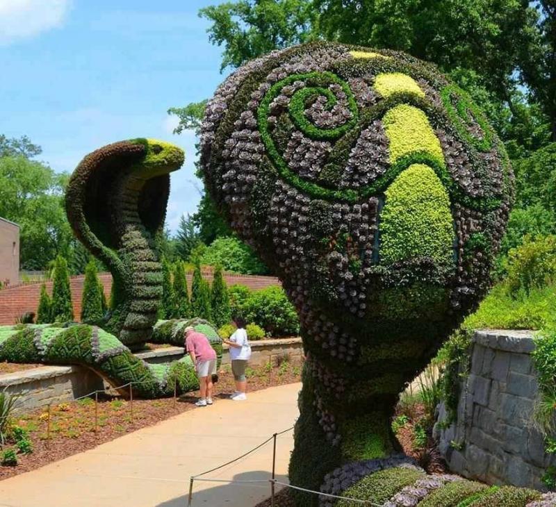 فن النحت في النباتات #غرد_بصورة -4