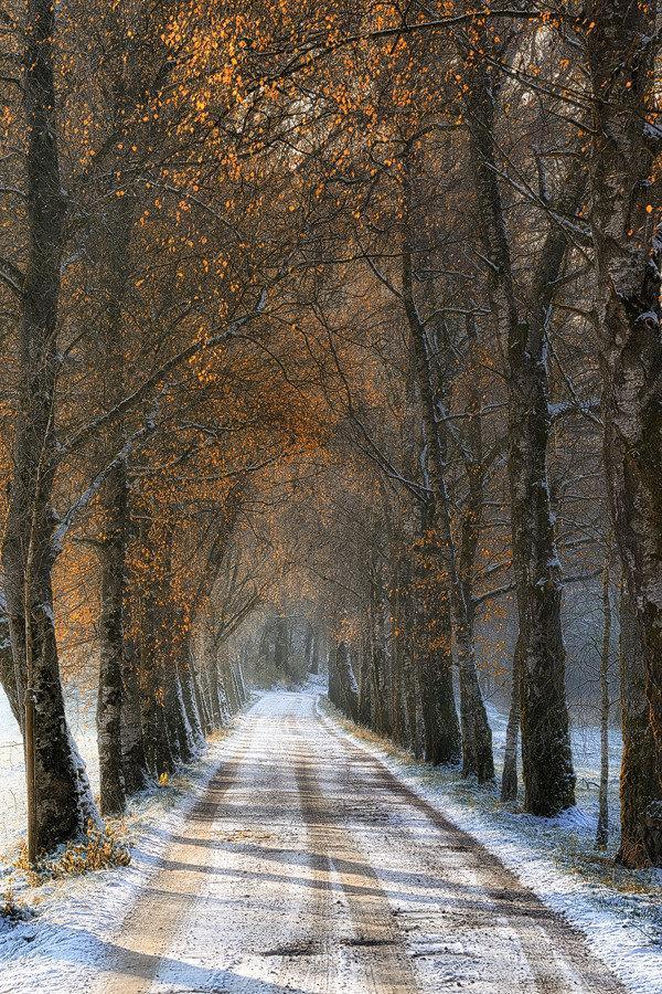 الخريف والشتاء في صورة واحدة من #مالطا