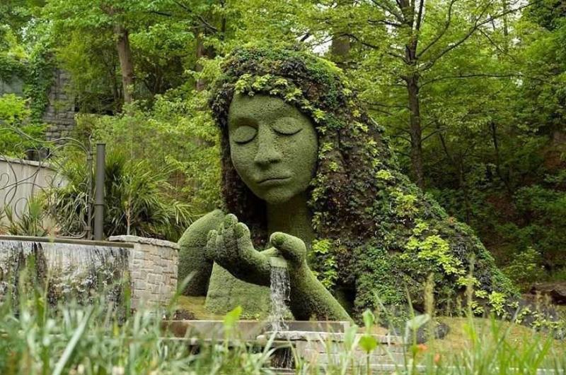 فن النحت في النباتات #غرد_بصورة -1