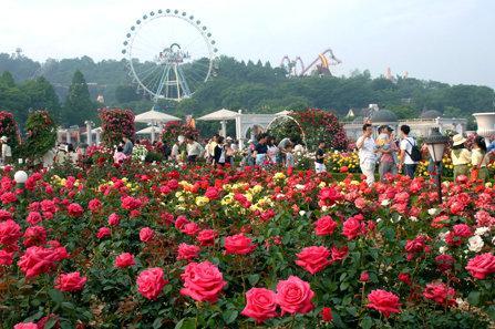 صورة من مدينة إنفرلاند #كوريا_الجنوبية -3