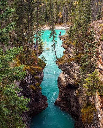 شلالات أتاباسكا في #كندا