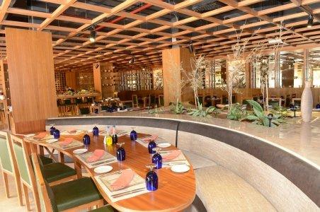 مطعم زيتونه الفيليج شارع السلام آل نهيان، #أبوظبي