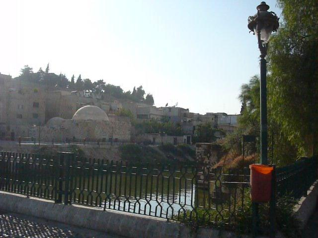 نهر العاصي #سوريا -2