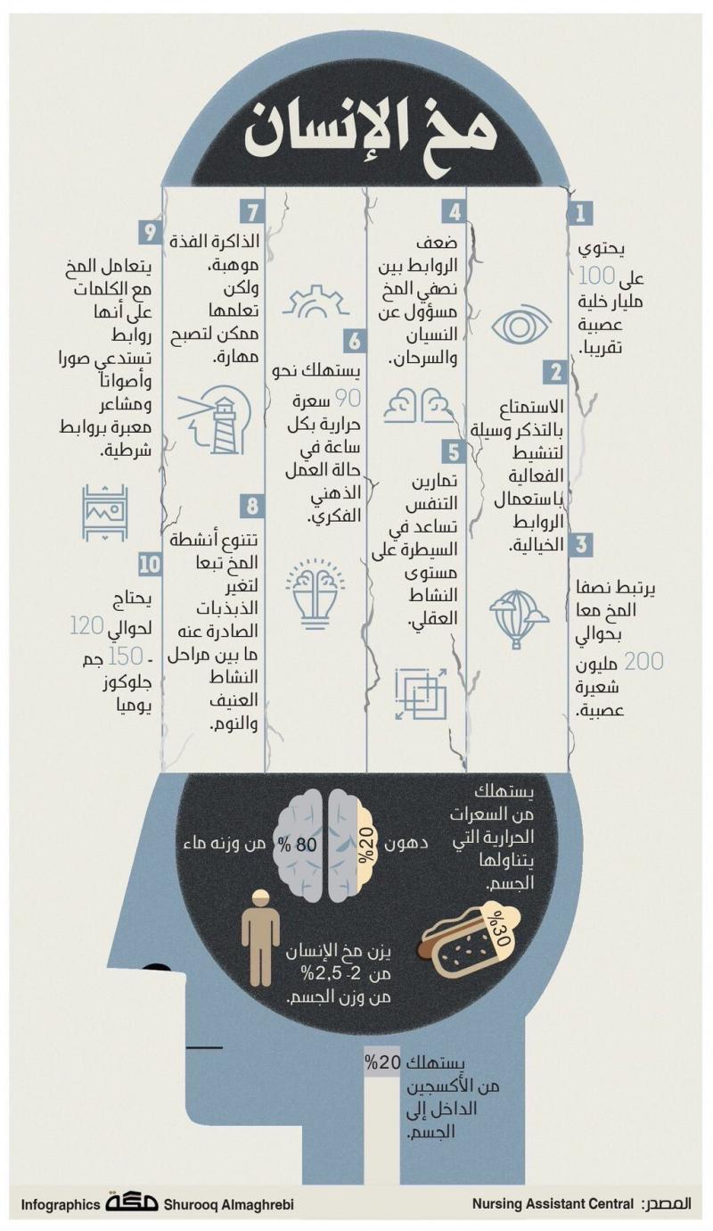 معلومات ستذهلك عن مخ الإنسان #انفوجرافيك