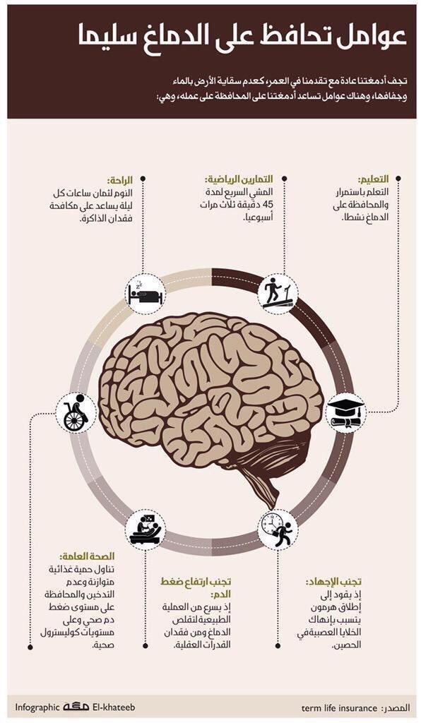 عوامل تحافظ على الدماغ سليما #انفوجرافيك