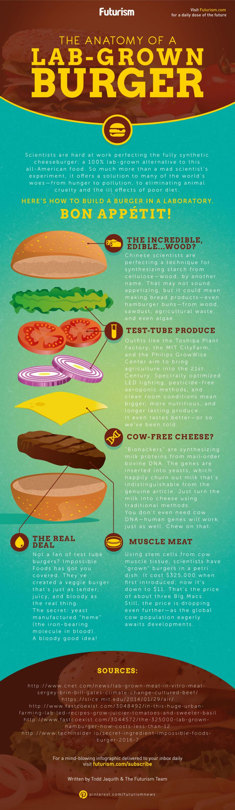 The anatomy of lab grown #burger #Infographic