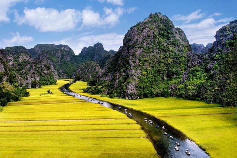 حقول الأرز في #فيتنام - صورة ٣