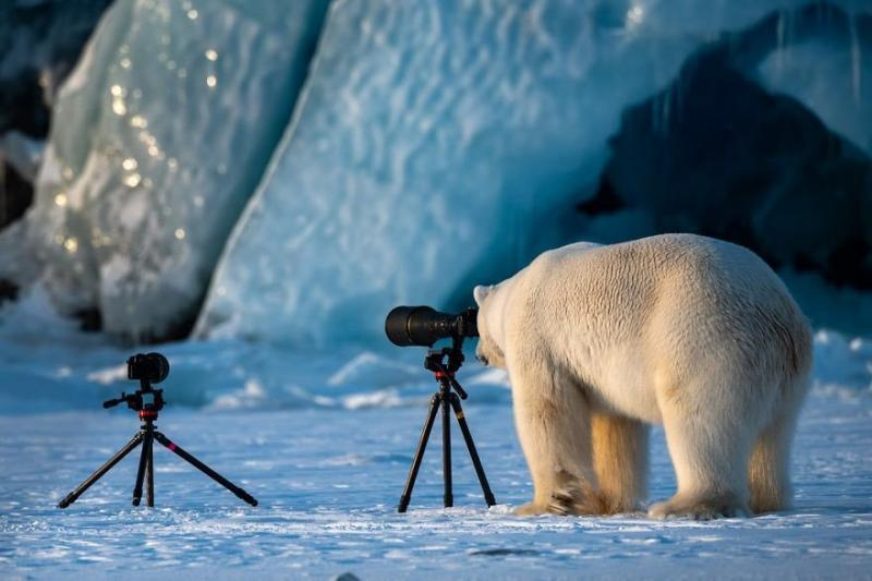 صور #حيوانات طريفة تصلح لعمل #خلفيات - صورة ٩