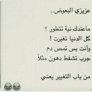 عزيزي البعوض #نهفات