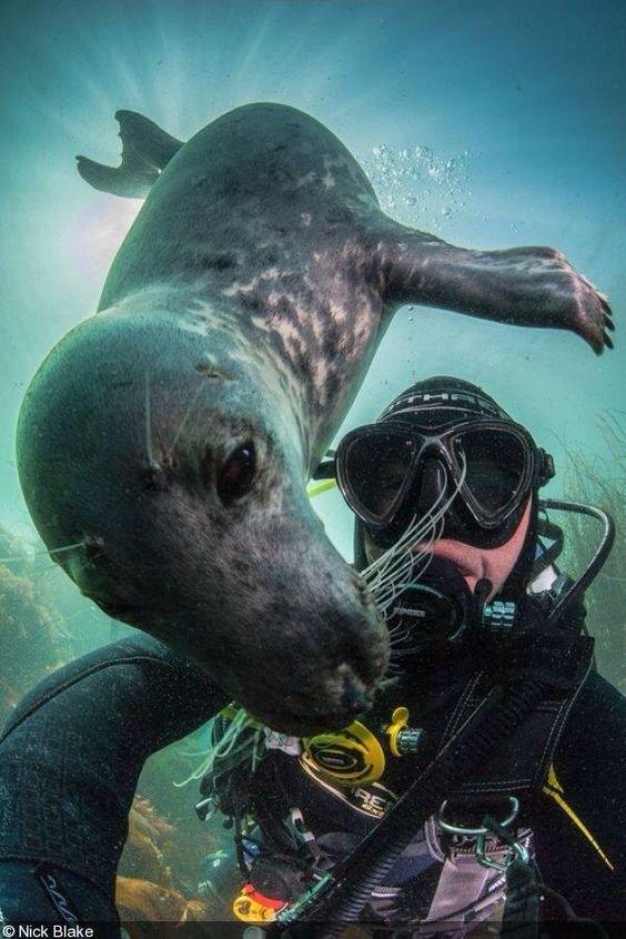 ٣٠ من أخطر صور ال #سيلفي للعام ٢٠١٨ #Selfie - صورة ٩