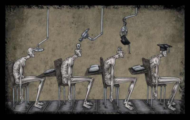 13 #كاريكاتير تصف حالة المجتمع #فن - صورة 1