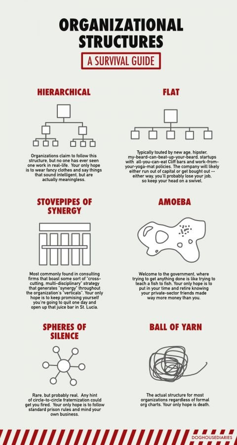 A Survival guide for Organizational Structures #Infographic