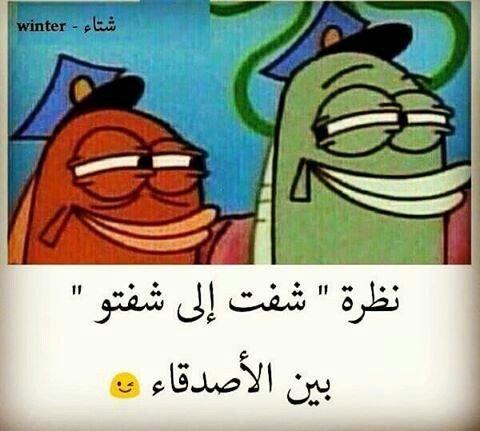 نظرة شفت اللي شفتو بين الاصحاب #مضحك #نهفات
