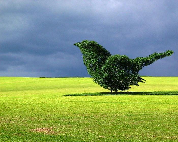 30 عمل باستخدام #الفوتوشوب لدمج صور #الحيوانات مع الخضار والفواكه #فن #مضحك - صورة 26