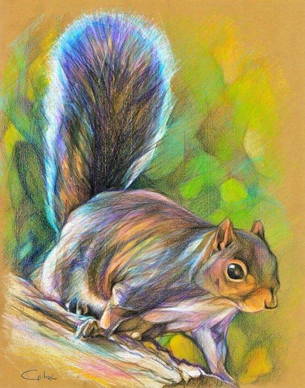 40 صورة ملونة باستخدام أقلام الرصاص #Pencil_Drawing #فن - صورة 35