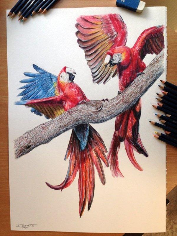40 صورة ملونة باستخدام أقلام الرصاص #Pencil_Drawing #فن - صورة 26