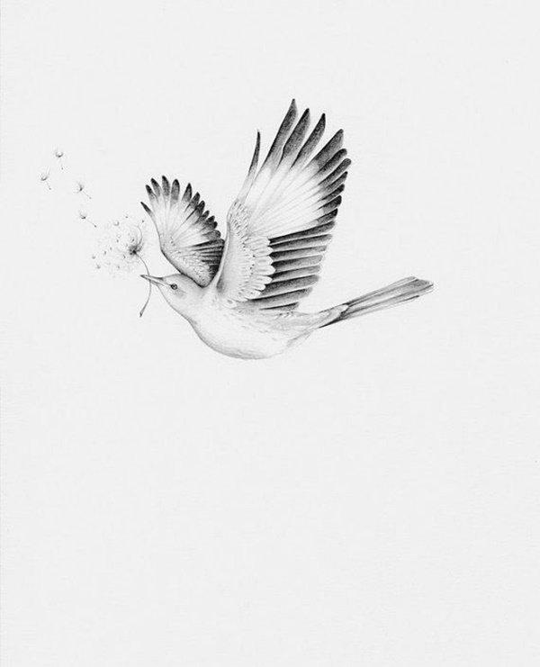 رسومات ثلاثية الأبعاد #3D باقلام الرصاص #Pencil_Sketch متقنة جدا #فن - صورة ٥