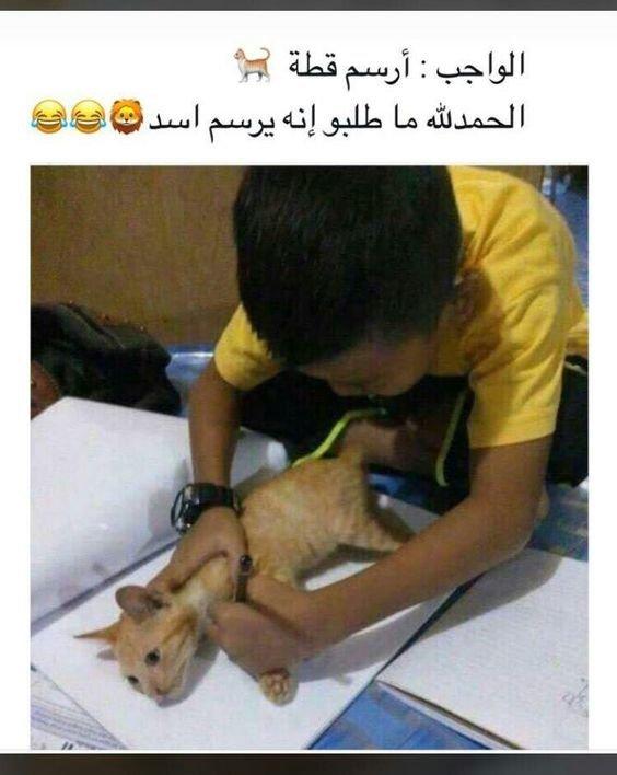 الواجب أرسم قطة #مضحك #نهفات