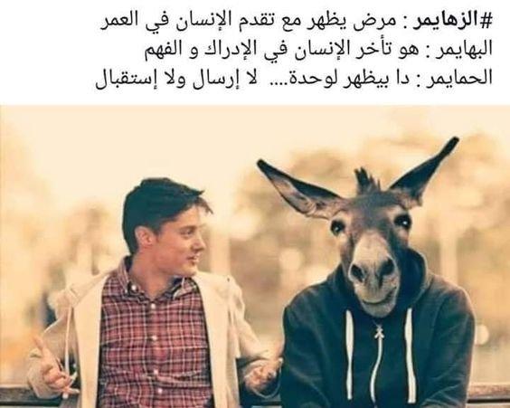 الفرق بين الزهايمر والبهايمر والحمايمر #مضحك #نهفات