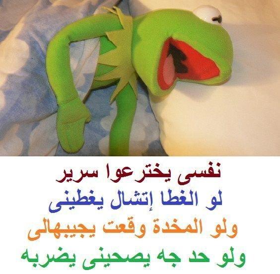 أمنية اللي يحب النوم #الضفدع_كيرميت #مضحك #نهفات