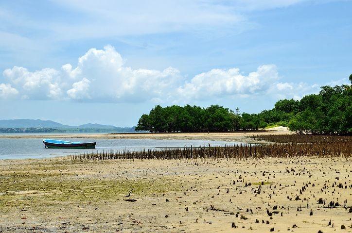 Photos from #Madagascar #Travel - Image 82