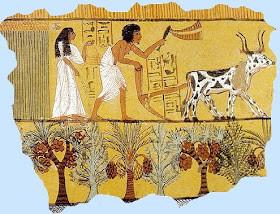 صور نادرة من #تاريخ #مصر #Egypt ال#قديم #الفراعنة - صورة 3