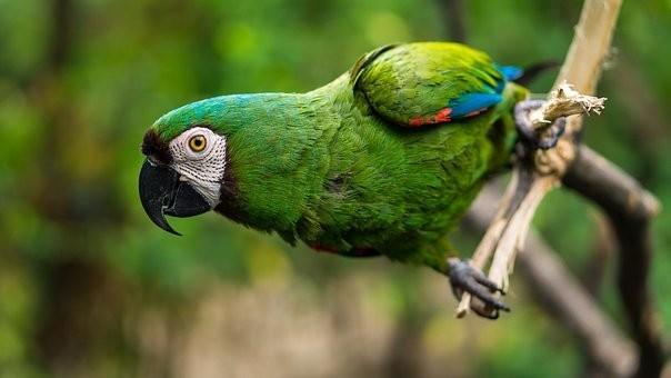 Photos from #Ecuador #Travel - Image 88