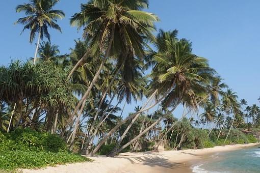 Photos from #SriLanka #Travel - Image 13