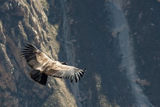 Photos from #Peru #Travel - Image 32