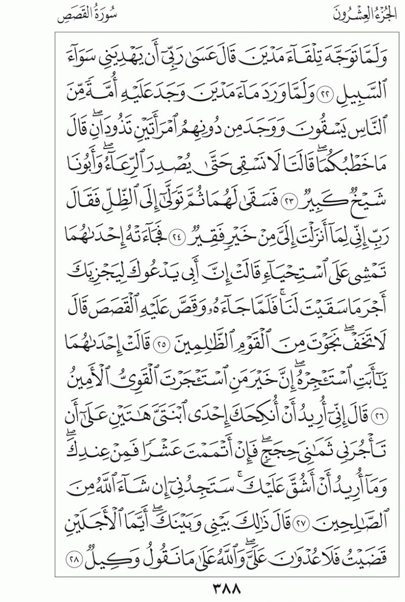 #القرآن_الكريم بالصور و ترتيب الصفحات - #سورة_القصص صفحة رقم 388