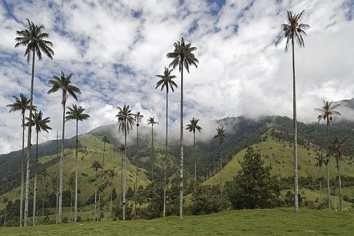 Photos from #Colombia #Travel - Image 1