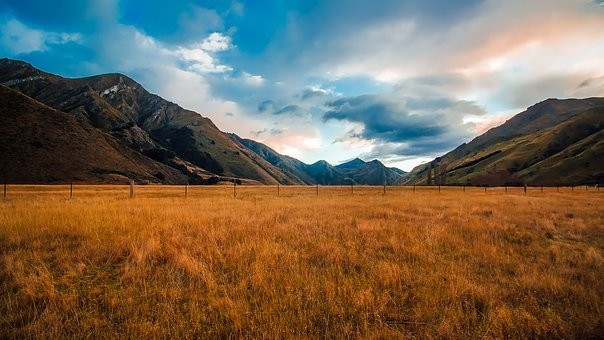 Photos from #New_Zealand #Travel - Image 57