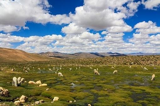 Photos from #Peru #Travel - Image 124