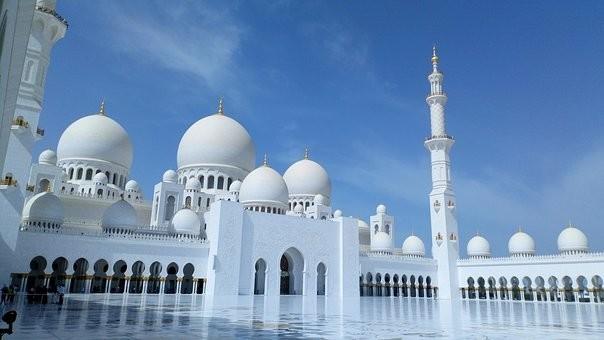 صور #مسجد #الشيخ_زايد في #أبوظبي #الإمارات - صورة 60