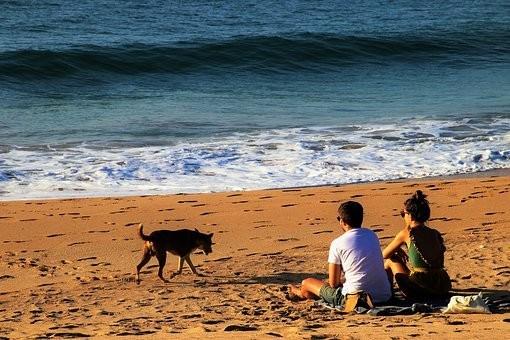 Photos from #SriLanka #Travel - Image 2