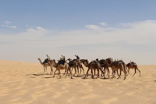 Photos from #Chad #Travel - Image 7
