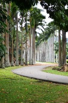 Photos from #SriLanka #Travel - Image 15