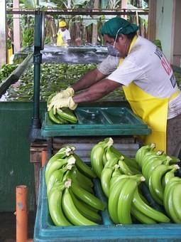Photos from #Ecuador #Travel - Image 71