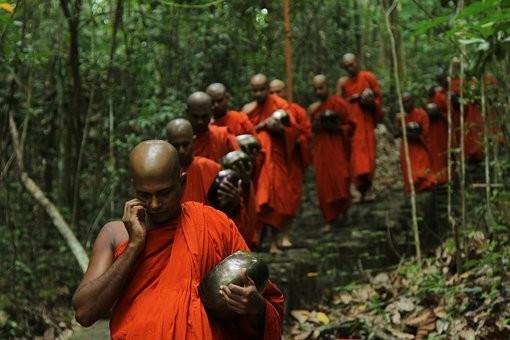 Photos from #SriLanka #Travel - Image 17