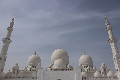 صور #مسجد #الشيخ_زايد في #أبوظبي #الإمارات - صورة 66