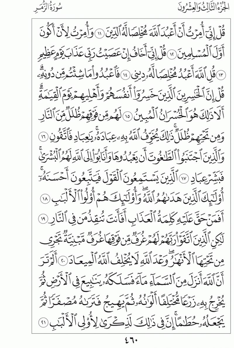 #القرآن_الكريم بالصور و ترتيب الصفحات - #سورة_الزمر صفحة رقم 460