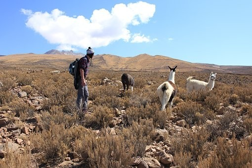 Photos from #Bolivia #Travel - Image 149