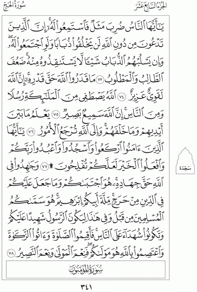 #القرآن_الكريم بالصور و ترتيب الصفحات - #سورة_الحج صفحة رقم 341