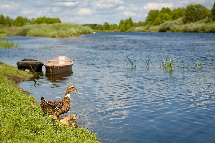 Photos from #Ukraine #Travel - Image 1